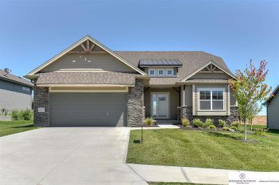 Single Family Home New: 11005 S 186 Avenue