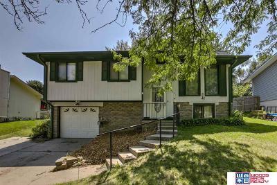 Lincoln Single Family Home New: 4931 W Saint Paul Avenue