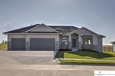 Single Family Home New: 20909 Drexel Street