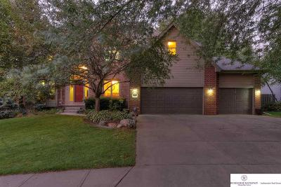 Omaha Single Family Home New: 4113 N 139 Avenue