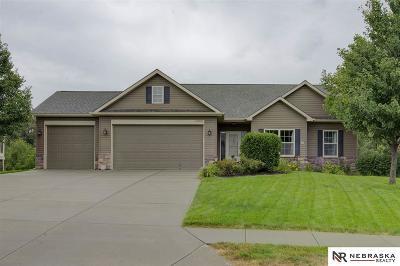 Omaha Single Family Home New: 12096 Elmwood Drive