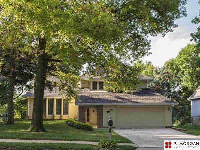 Single Family Home New: 10929 Taylor Street