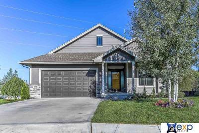 Omaha Single Family Home New: 10002 S 179 Street