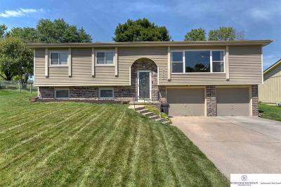 Single Family Home New: 9692 Ames Avenue