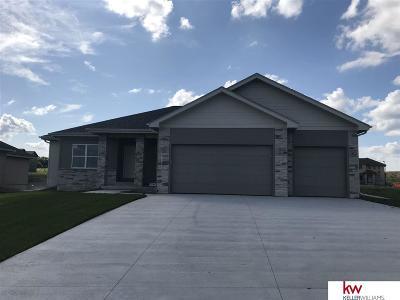 Single Family Home New: 650 N 11th Circle