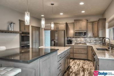 Omaha NE Single Family Home New: $480,000