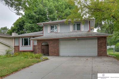 Omaha NE Single Family Home New: $205,000