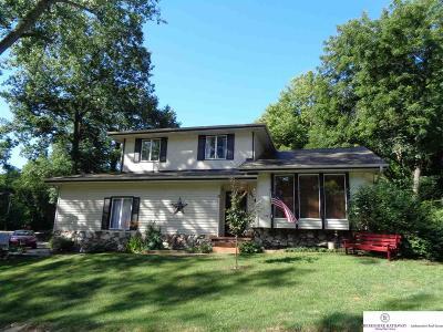 Plattsmouth Single Family Home New: 1114 Elizabeth Drive