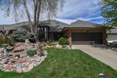 Lincoln Single Family Home New: 3824 Firethorn Court