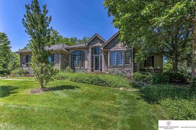Omaha Single Family Home For Sale: 910 N 142 Street