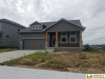 Elkhorn Single Family Home For Sale: 3806 S 204th Avenue