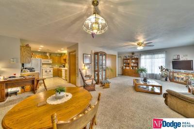 Fremont Single Family Home For Sale: 1742 Ohio Street