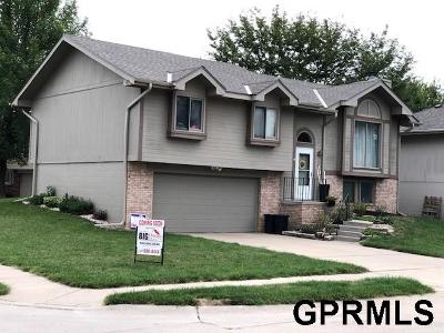 Omaha Single Family Home For Sale: 15226 Valley Street