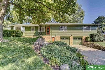 Omaha Single Family Home For Sale: 2227 S 91st Street