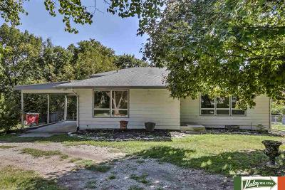 Omaha Single Family Home For Sale: 8819 Lake Street