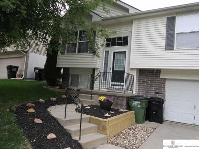 Single Family Home New: 17710 Lillian Street
