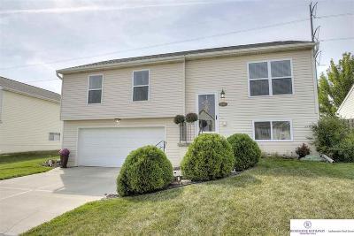 Single Family Home New: 16107 Robin Drive