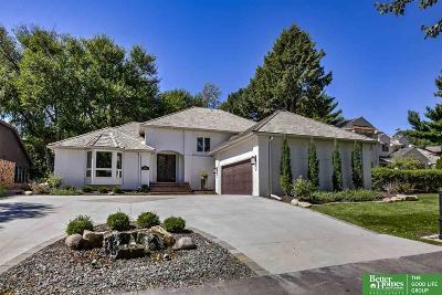 Omaha Single Family Home New: 1120 S 113th Plaza