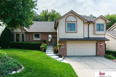 Omaha Single Family Home New: 16161 Lamp Street