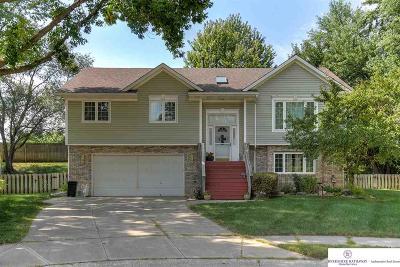 Douglas County Single Family Home New: 15572 Harney Circle