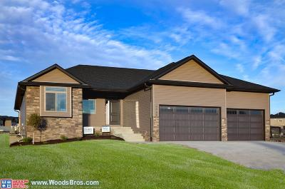 Lincoln Single Family Home For Sale: 9738 Friedman Street