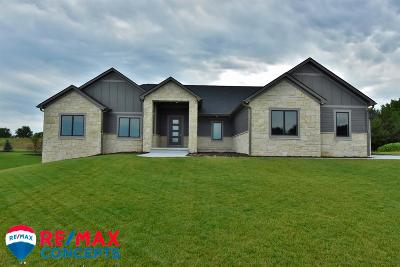Lincoln Single Family Home For Sale: 8601 Tralee Road