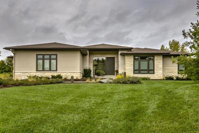 Lincoln Single Family Home For Sale: 3521 Doonbeg Rd