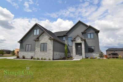 Lincoln Single Family Home For Sale: 7941 South 97th Bay