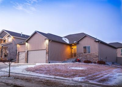 Lincoln Single Family Home For Sale: 2840 Valley Stream Drive