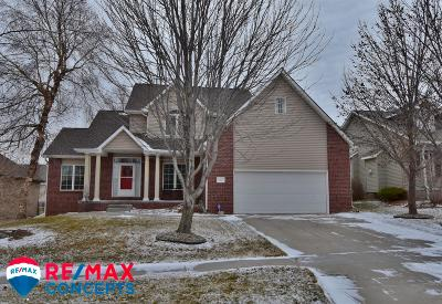 Lincoln Single Family Home For Sale: 2230 Scotch Pine Trail