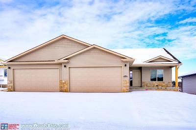 Lincoln NE Single Family Home For Sale: $300,000