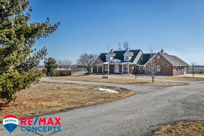 Eagle Single Family Home For Sale: 21803 Van Dorn Street