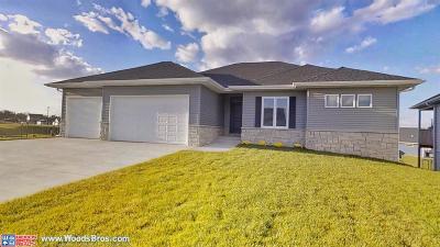 Lincoln Single Family Home For Sale: 7266 Fuji Lane
