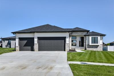Lincoln Single Family Home For Sale: 6516 Julia Circle