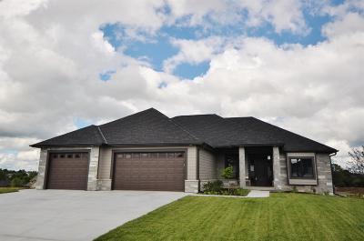 Lincoln Single Family Home For Sale: 6300 Granite Ridge Road