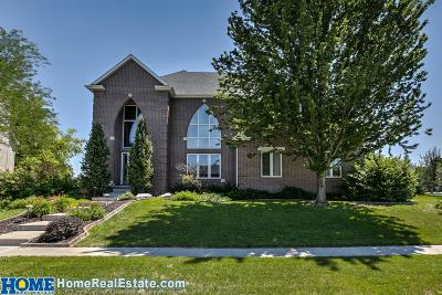 Lincoln Single Family Home For Sale: 8340 Water Tower Court