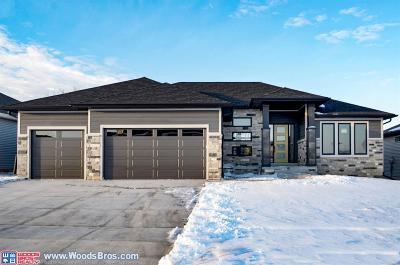 Lincoln Single Family Home For Sale: 9721 Friedman Street
