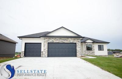 Lincoln Single Family Home For Sale: 9805 Fairbury Lane