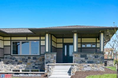 Single Family Home For Sale: 810 Aster Road