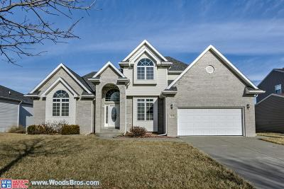 Lincoln Single Family Home For Sale: 7858 Creek View Drive