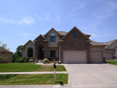 Lincoln Single Family Home For Sale: 8725 Angeline Ct.