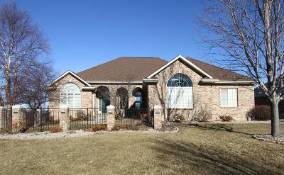 Lincoln Single Family Home For Sale: 9427 Hollow Tree Court