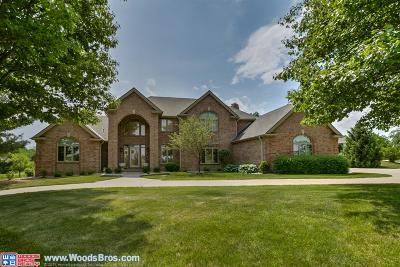 Lincoln Single Family Home For Sale: 9101 Tuscan Court