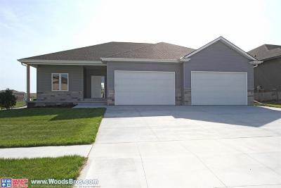 Lincoln Single Family Home For Sale: 9710 Balkan Avenue