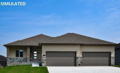 Lincoln Single Family Home For Sale: 10341 Shoreline Drive
