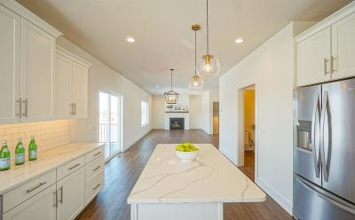 Lincoln Single Family Home For Sale: 9712 Murano Court