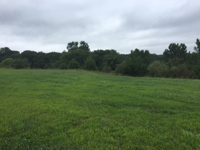 Residential Lots & Land For Sale: Waubonsie Ridge Highway 2