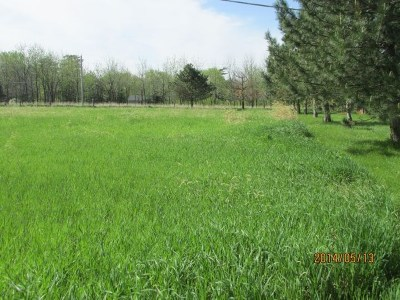 Residential Lots & Land For Sale: 2500 Park Road