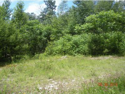 Residential Lots & Land For Sale: 2 White Fawn Trail