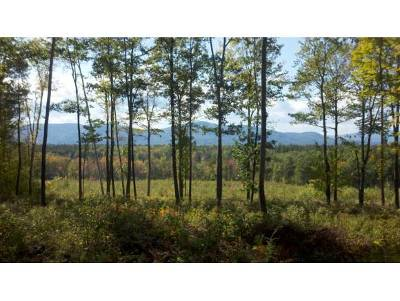 Sandwich Residential Lots & Land For Sale: Mountain Road